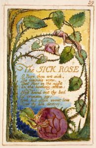 SickRose