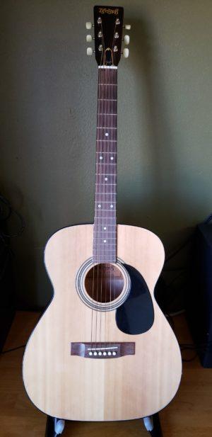 GuitarTetomasF120