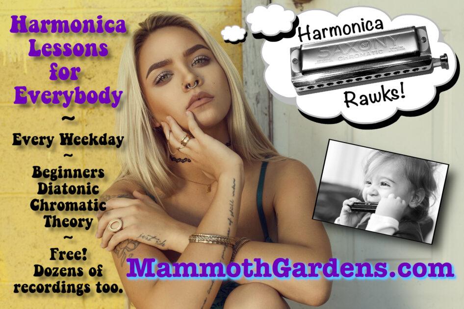 HarmonicaAd02